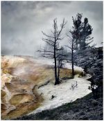 Odile Lapujoulade - Mammoth Hot Springs